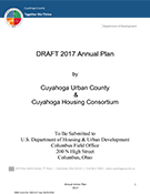 cover of 2017 Annual Plan